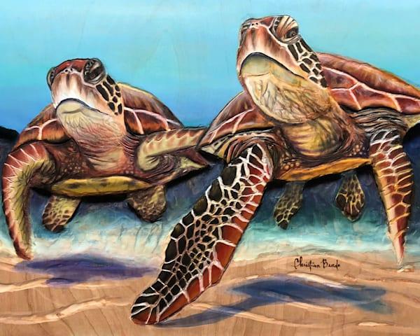 Art on Demand   Hawaii Art by Christian Bendo