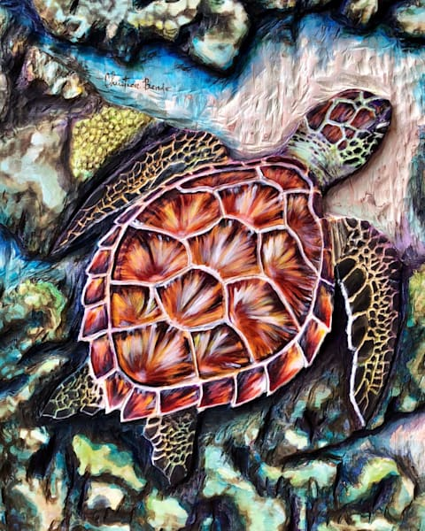 Art on Demand   Carapace Colors by Christian Bendo