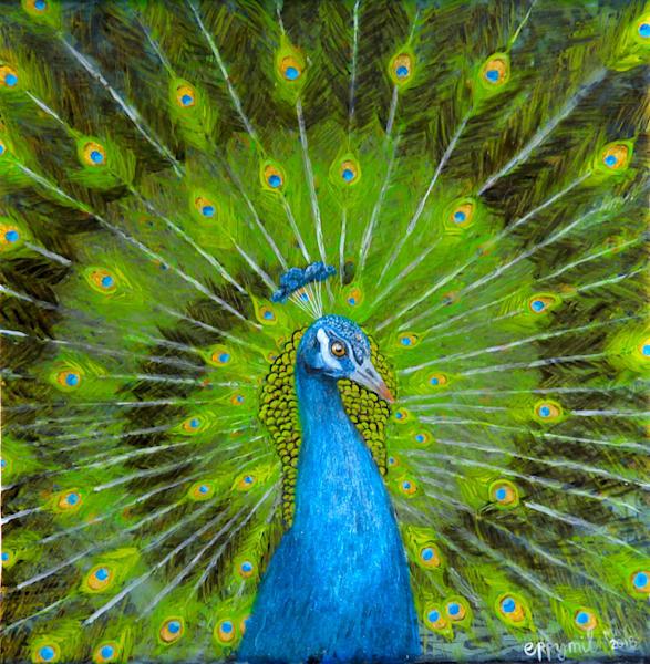 Peacock acrylic painting: Shop Print / Errymil Batol
