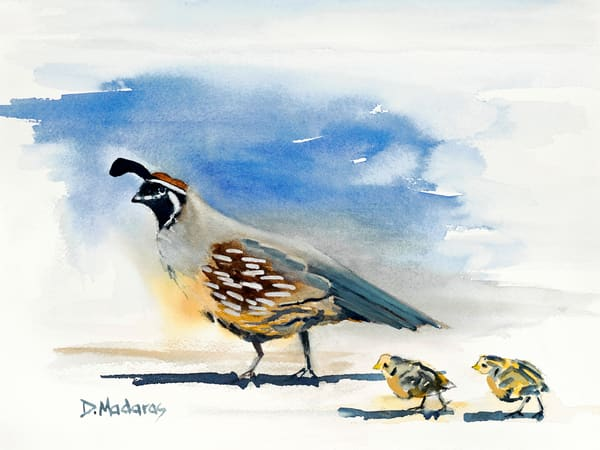 Animal Scenes | Southwest Art in Tucson | Madaras