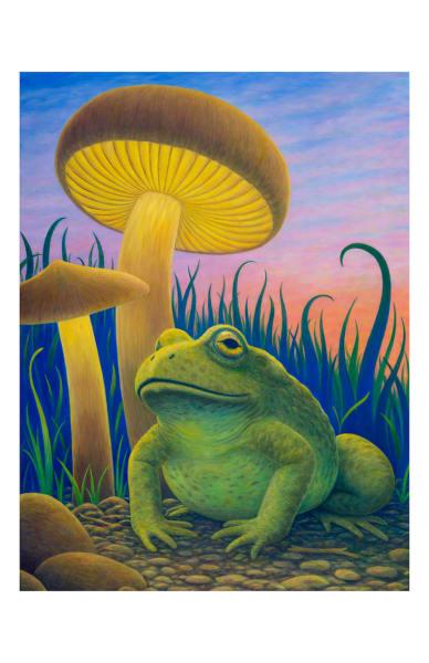 Magic Toad 5x7 inch notecard