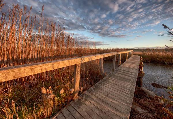 Quansoo Bridge Reeds Art | Michael Blanchard Inspirational Photography - Crossroads Gallery