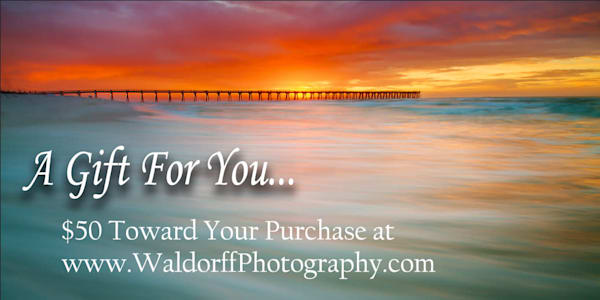 $50 Emerald Coast of Florida Gift Card to purchase Fine Art Prints on Canvas, Paper, Metal, & More | Waldorff Photography