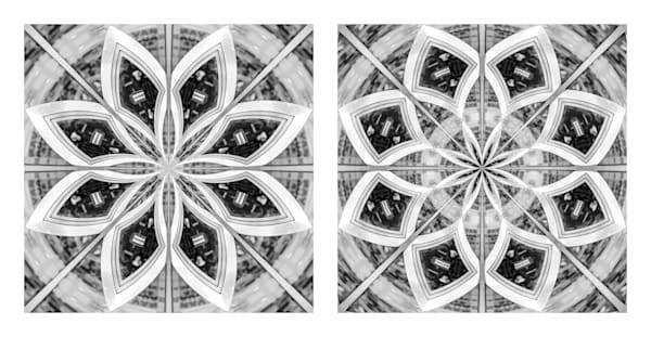 Petals of Illusion (diptych)