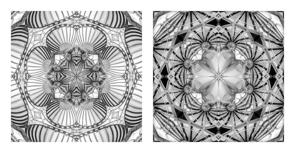 Under Vaulted Steel Seashells (diptych)
