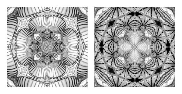 Under Vaulted Steel Seashells (diptych)