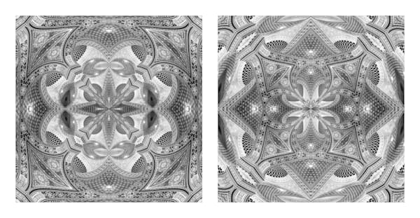 An Infinity of Details (diptych)