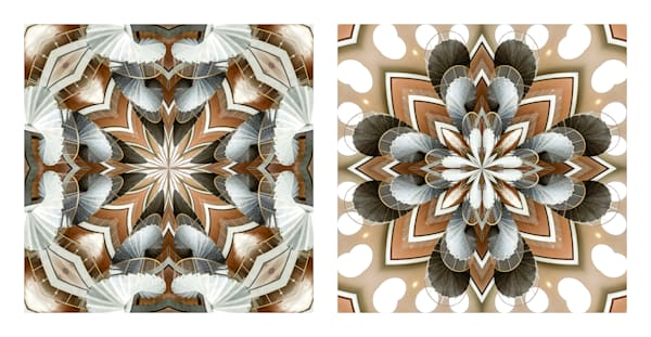 All Paths Have the Same Destination (diptych)