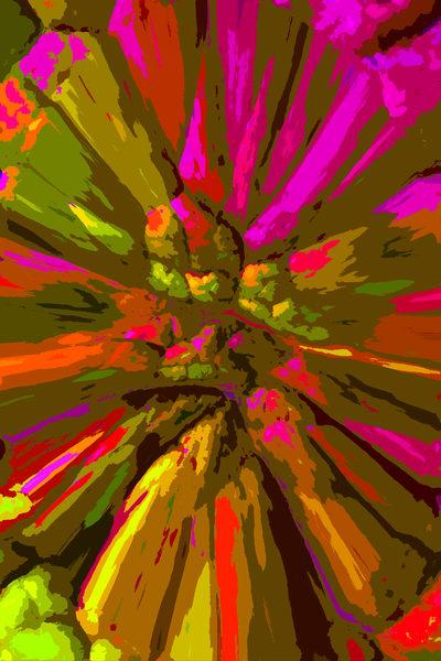 Lauree Feldman Kale Leaves