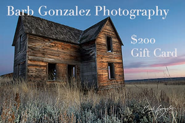 $200 Gift Card | Barb Gonzalez Photography