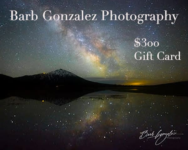 $300 Gift Card  | Barb Gonzalez Photography