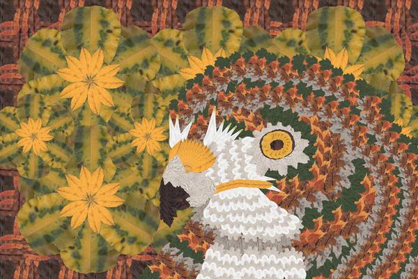 Hawk Art   smacartist