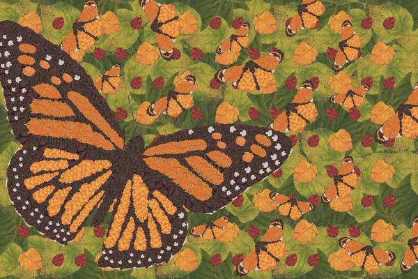 Monarch Art | smacartist