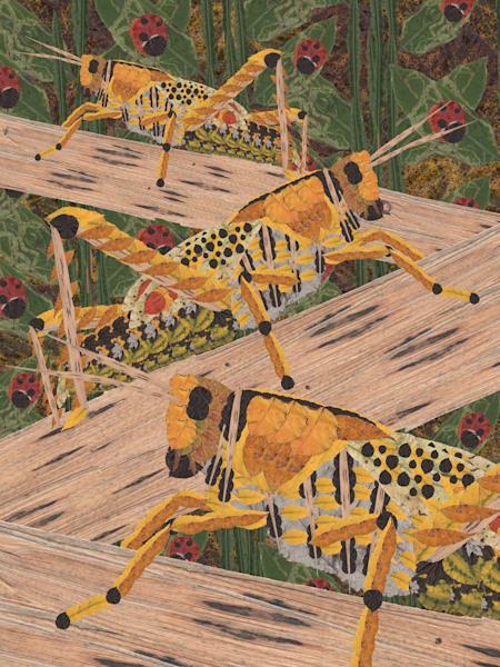 Grasshoppers Art | smacartist