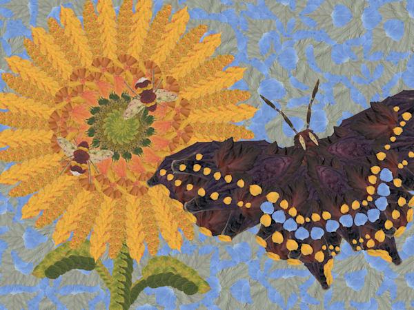 Sunflower And Butterfly Art | smacartist