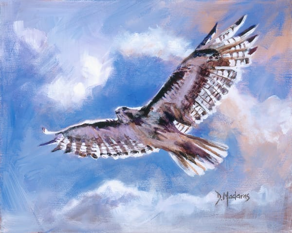 My Blue Heaven Soaring Bird Diana Madaras
