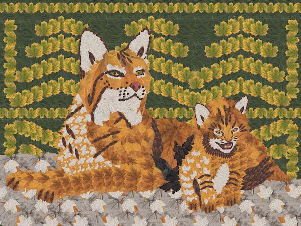 Bobcat And Cub Art | smacartist