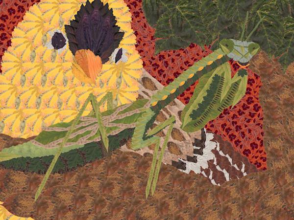 Praying Mantis And Bird Art | smacartist