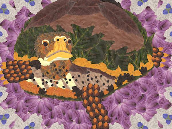 Reptiles & Underwater