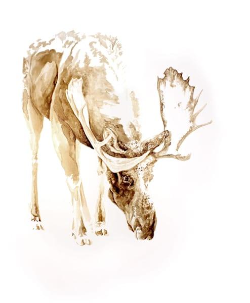 Snowy Moose - Original Coffee Painting