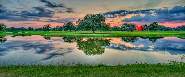Oak Tranquility