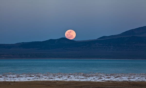 Blood Moon Rising  I California Landscape Photography I David N. Braun | Mono Lake | Eastern Sierra