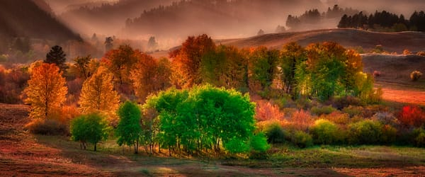 Montana landscape, fall colors