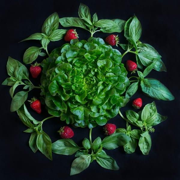 Strawberry, Basil Mandala