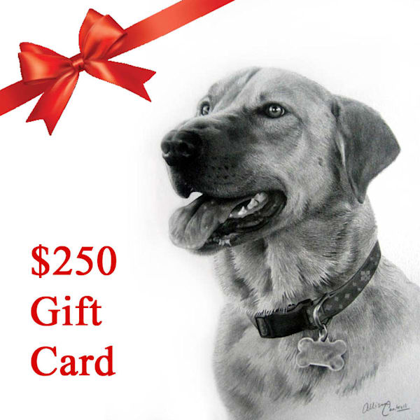 $250 E-Gift Card