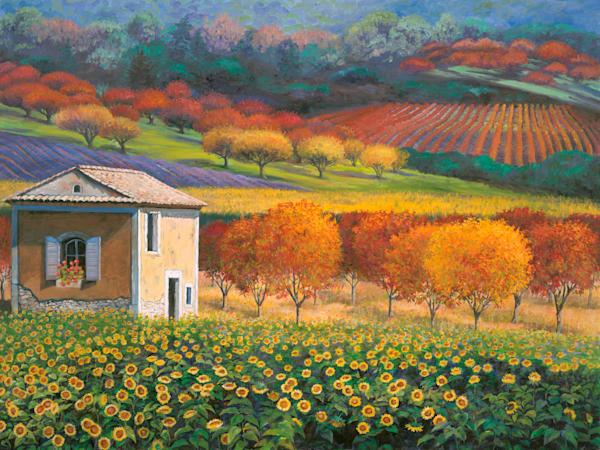 Provence & Rural France