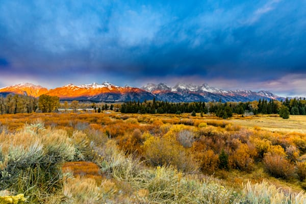 Grand Tetons Sunrise with Fall colors: by Curt Peters