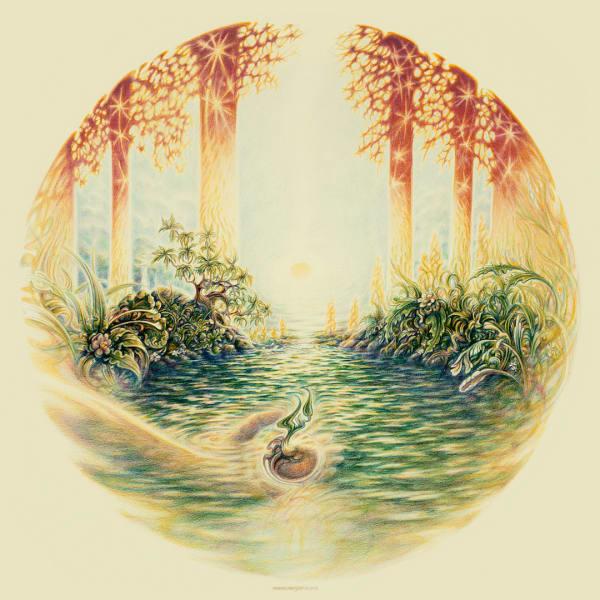 Seed Tapestry | markhensonart