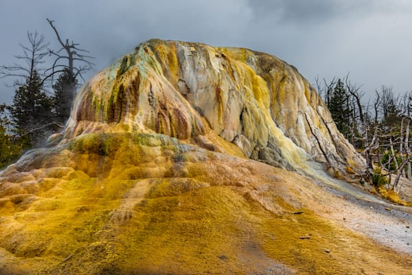 Fountain Pots: Yellowstone National Park - by Curt Peters