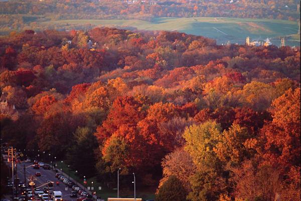 Burnet Woods, Cincinnati, OH