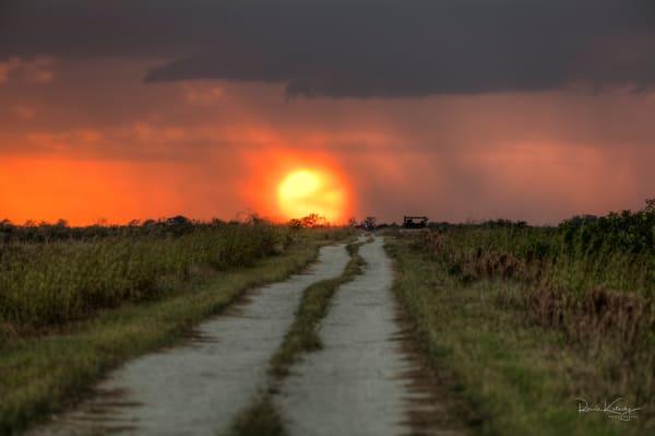 Everglades Fireball Sunset Fine Art Photograph