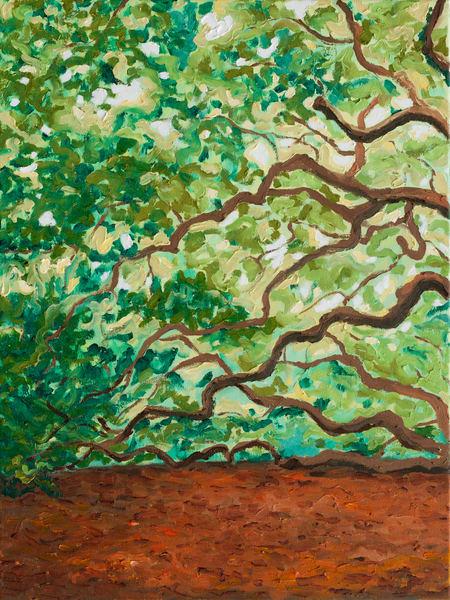 Angel Oak Triptych