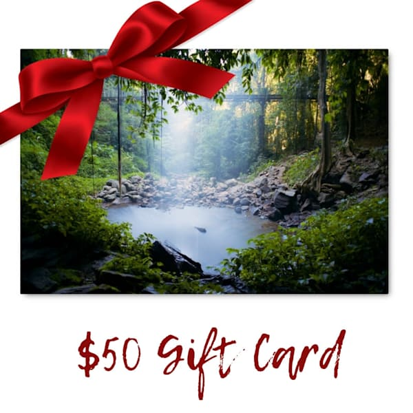 $50 Gift Card Voucher for Art