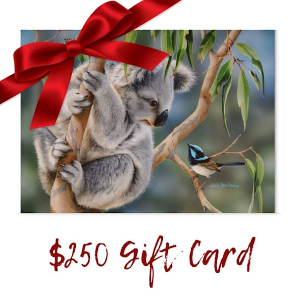 $250 Gift Card Voucher for Art