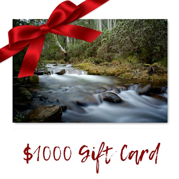 $1000 Gift Card Voucher for Art