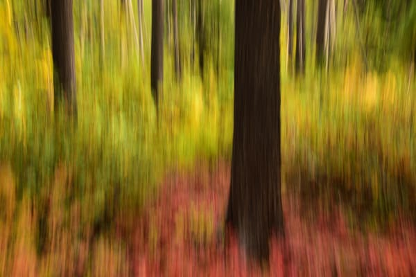 Autumn Quickens - Redfish Lake Motion Blur in Central Idaho - Fine Art Prints on Metal, Canvas, Paper & More By Kevin Odette