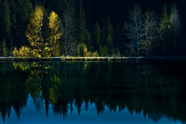 Curtain Call on Indian Summer in Banff |Banff National Park|Canadian Rockies|Rocky Mountains|
