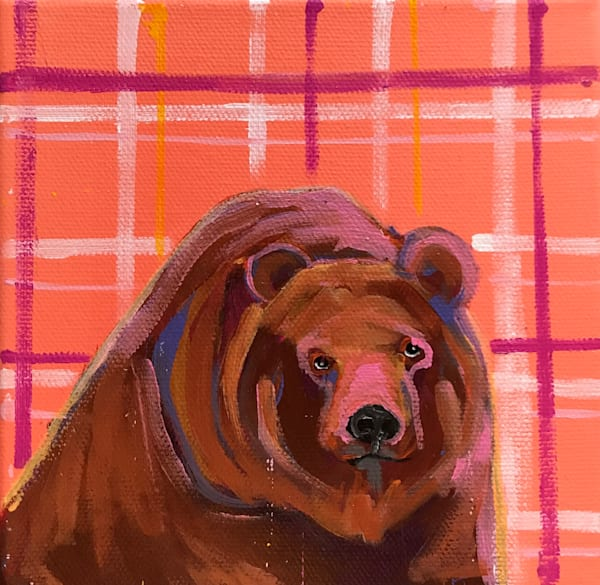 BROWN BEAR 6 X 6