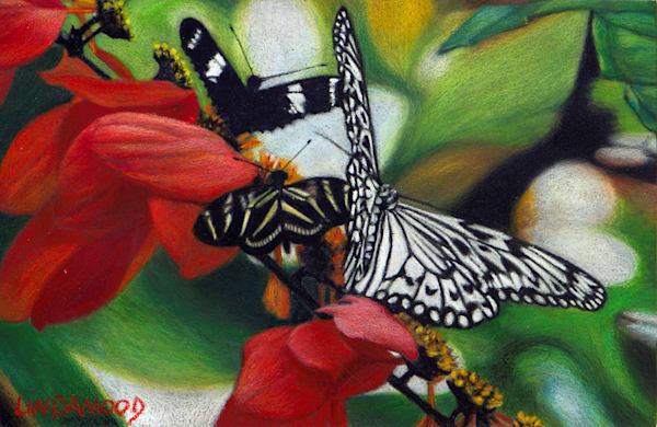 Black & White & Red All Over  Art | Lindamood Art