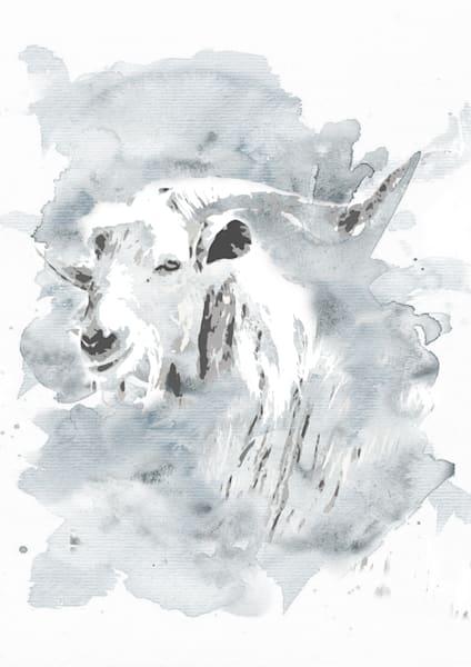 Spiral Horn Goat