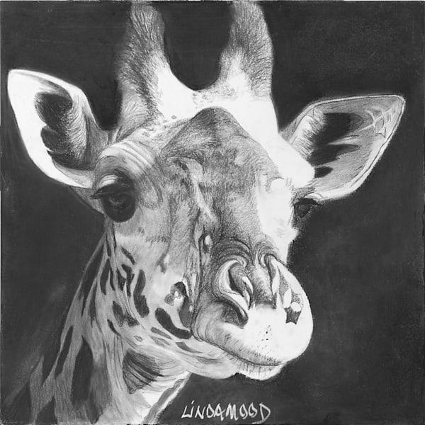 Chin Up Art | Lindamood Art