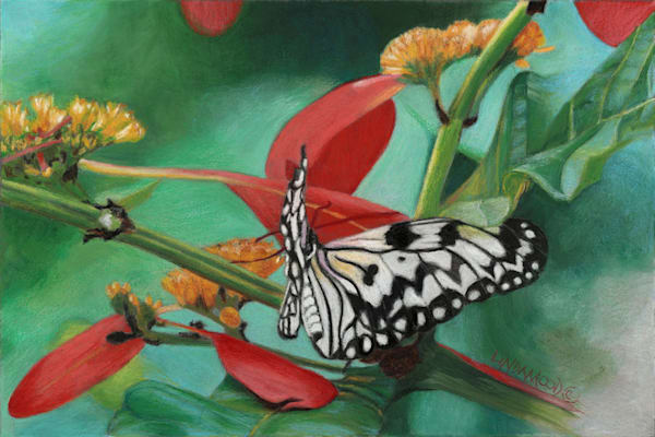 Rice Paper Butterfly Art | Lindamood Art