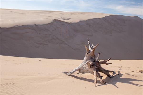Silver Lake Dunes