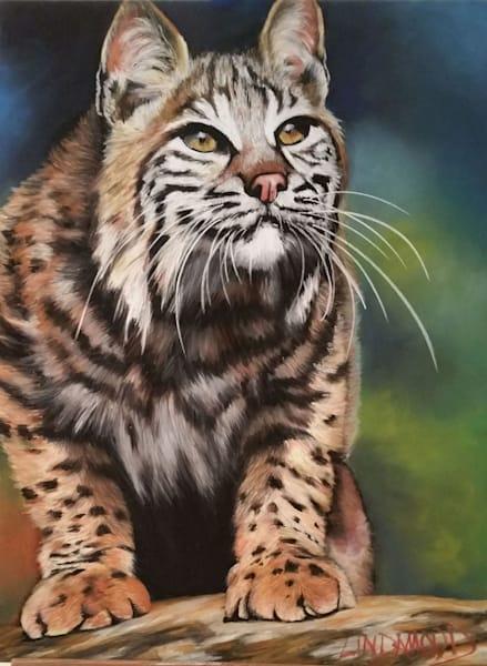 Bobcat - Got Eyes on You