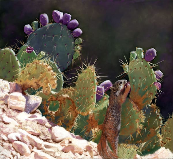 Cactus Squirrel