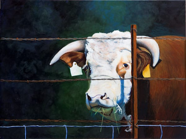 Don't Fence Me In Art | Lindamood Art